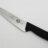 Купить кухонный нож Victorinox 5.2033.19 в один клик. Доставка по РФ. Выгодные цены.